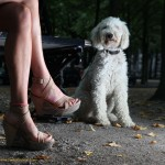 Heelsshoot wit Anne Marie and dog in The Hague
